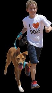 dog jog 2