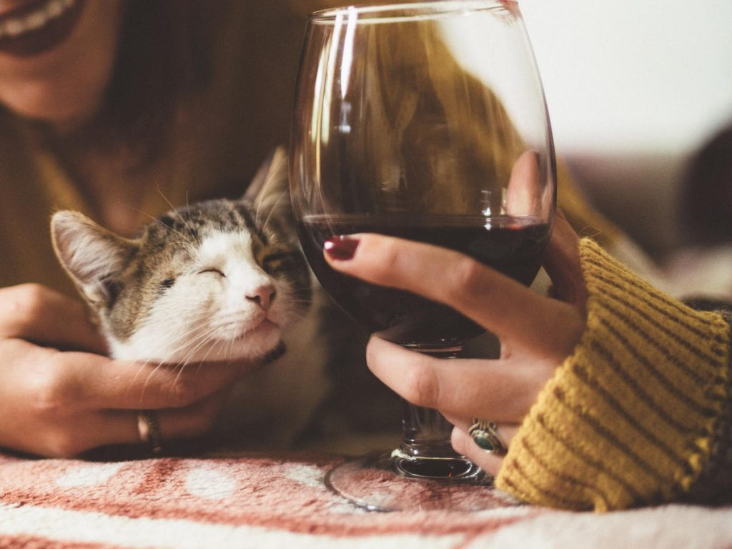 Young woman with cat at home and glass of red wine